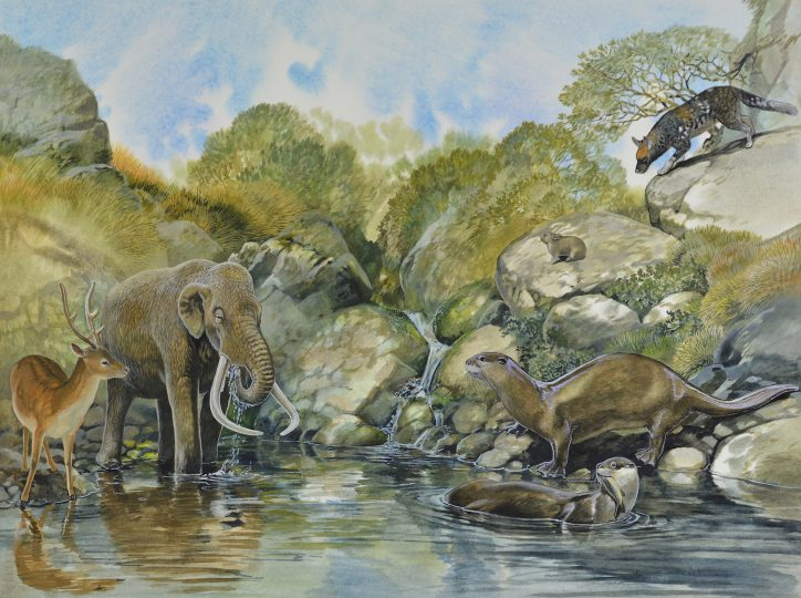 End of the Megafauna - Sardinian Dwarf Mammoth, Sardinian Giant Otter, Deer, Sardinian Dhole, Giant Pica