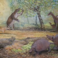 End of the Megafauna - South American Dog, Litopern, Pampathere, Giant Ground Sloth