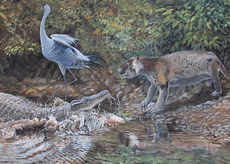 End of the Megafauna - Sloth, Cuban Flightless Crane, Cuban Crocodile