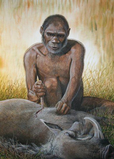 End of the Megafauna - Rhodesian Man, Giant Warthog
