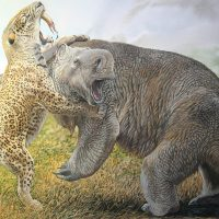 End of the Megafauna - cover image, South American Smilodon, Darwin's Mylodon
