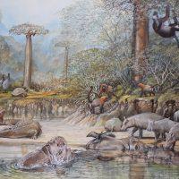 End of the Megafauna - Malagasy Hippo, Lemur, Elephant Bird, malagasy Crocodile, Giant Tortoise, Malagasy Anhinga