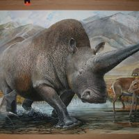 End of the Megafauna - Elasmotherium, Saiga, Demoiselle Crane, Woolly Mammoth