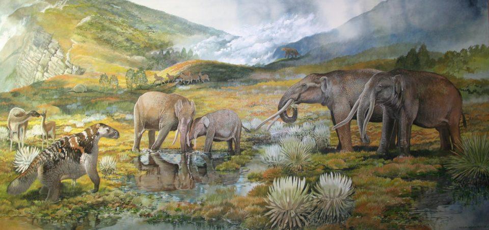 End of the Megafauna - Andean Gomphothere, Sloth, Long-legged Llama, Glyptodont, Horse, Giant Ground Sloth