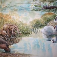 End of the Megafauna - Giant Swan, Dwarf Elephant, Maltese Hippo