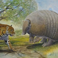 End of the Megafauna - Giant Pampathere, Jaguar