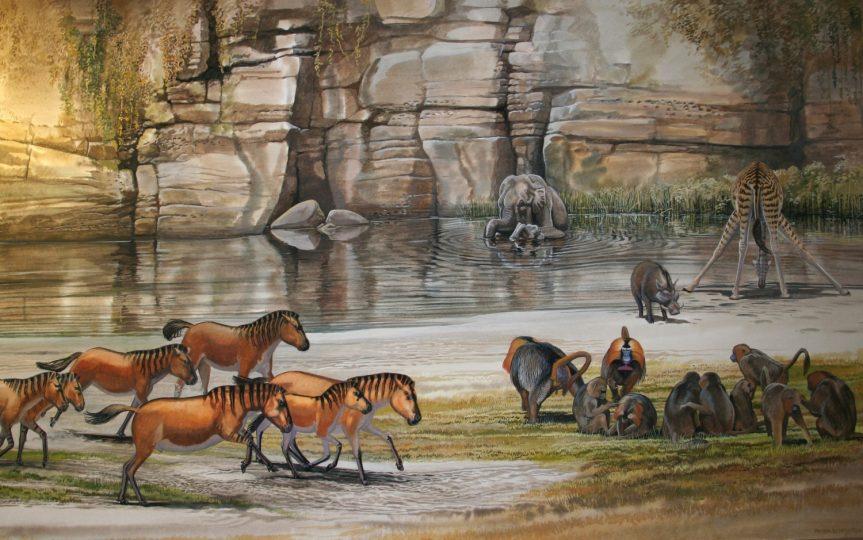 End of the Megafauna - Horse, Elephant, Giraffe, Gelada, Warthog