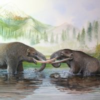 End of the Megafauna - Mastodon