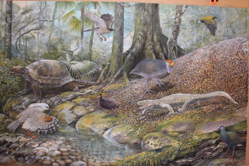 End of the Megafauna - Kagu, Land Crocodile, Megapode, Sylviornis, Giant Tortoise, Rail, Pigeon, Goshawk, Palm