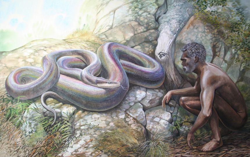 End of the Megafauna - Wonambi, Aboriginal man